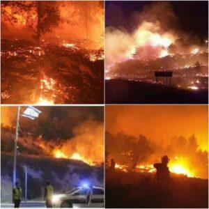 israel_fire
