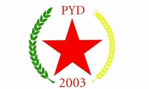 Die Demokratischen Kräfte Syriens und das Regime Bashar al-Assads