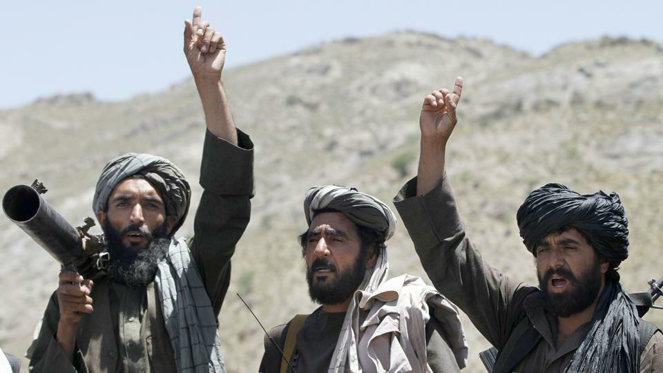 Mit den Taliban gegen die Islamisten?