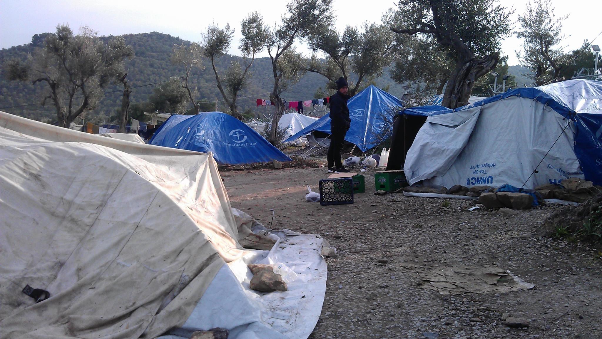 Bereits 5,5 Millionen Syrer ins Ausland geflohen