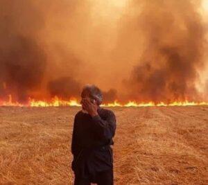 Vorbild Hamas: IS verbrennt Ackerland in Syrien