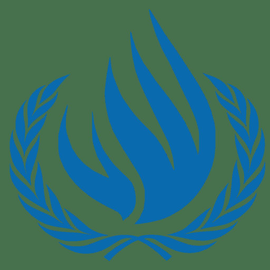 Wieso die UNO eine Konferenz über Folter verschiebt