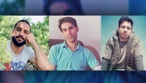 Die Bürder Vahid, Navid und Habib Afkari