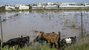 Auch dieses Jahr wurde wieder die Mär verbreitet, Israel sei für Überschwemmungen in Gaza verantwortlich