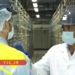 Zentrifugen in der Urananreicherungsanlage Natanz