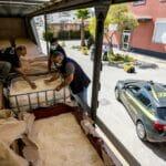 Italienische Polizei beschlagnahmt LKW mit synthetischen Drogen aus Syrien