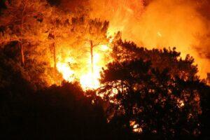 Erdogans Auftritt im Brandgebiet von Marmaris empört viele Türken. (© imago images/GocherImagery)